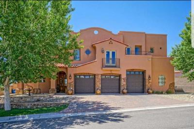 Bernalillo Single Family Home For Sale: 1009 C De Baca Lane