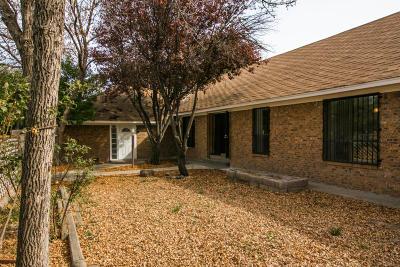 Albuquerque Single Family Home For Sale: 2558 Del Sur Drive SW