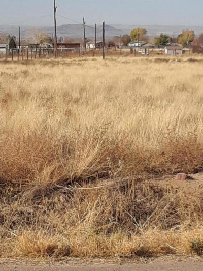 Valencia County Residential Lots & Land For Sale: Sportsman Drive