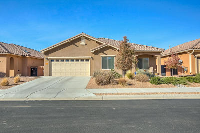 Bernalillo Single Family Home For Sale: 983 Salt Cedar Court