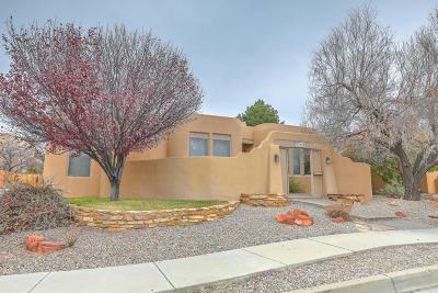 Albuquerque Single Family Home For Sale: 1902 Via Del Sol NE