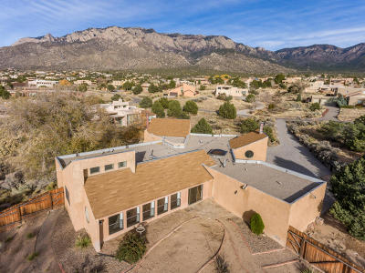Sandia Heights Single Family Home For Sale: 1457 Bluebell Drive NE