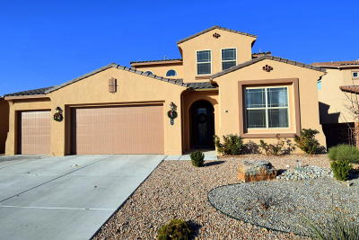 Rio Rancho Single Family Home For Sale: 1417 Cereza Drive SE