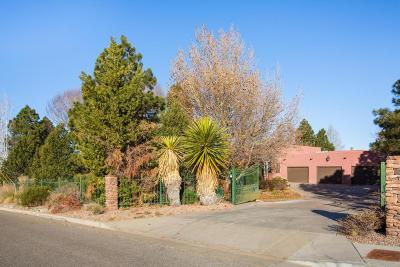 Single Family Home For Sale: 12005 San Antonio Drive NE