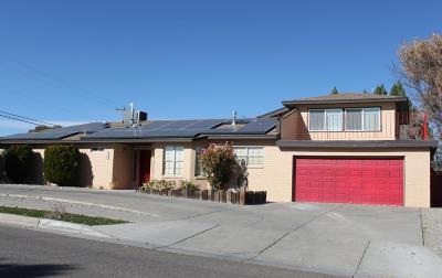 Albuquerque Single Family Home For Sale: 3849 Riverview Road NW