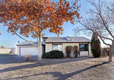 Rio Rancho Single Family Home For Sale: 501 Orange Drive SE