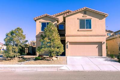 Albuquerque Single Family Home For Sale: 2000 Pleasanton Drive SE