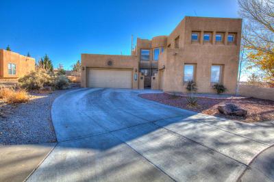 Albuquerque Single Family Home For Sale: 4240 Saddleback Road NW