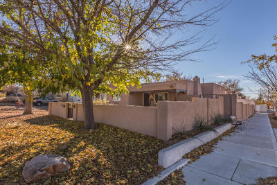 Albuquerque Single Family Home For Sale: 401 Wellesley Drive SE
