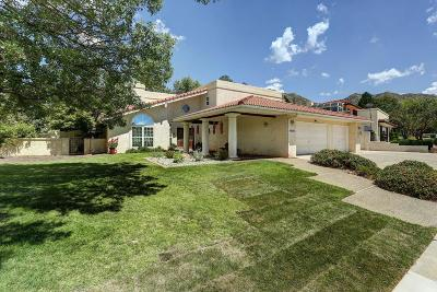 Albuquerque Single Family Home For Sale: 14017 Mesita Cliff Road NE