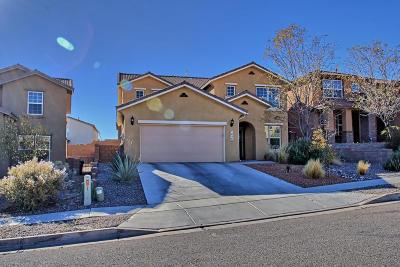 Rio Rancho Single Family Home For Sale: 7205 Fairbanks Drive NE