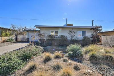 Albuquerque Single Family Home For Sale: 4612 Palo Duro Avenue NE