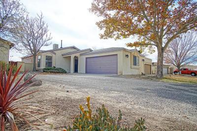 Rio Rancho Single Family Home For Sale: 1605 Skyview Circle NE