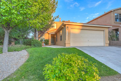 Albuquerque Single Family Home For Sale: 10716 Stone Hollow Place NW