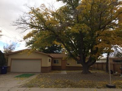 Albuquerque Single Family Home For Sale: 1429 Marcella Street NE