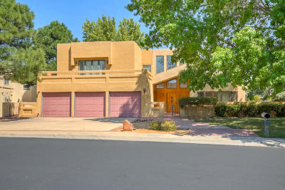 Albuquerque Single Family Home For Sale: 9515 Augusta Avenue NE