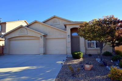 Albuquerque Single Family Home For Sale: 10116 Calle Placido NW