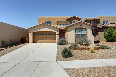 Albuquerque Single Family Home For Sale: 8823 Valle Prado Lane NW