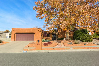 Single Family Home For Sale: 9601 Regal Ridge Drive NE