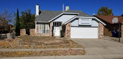 Albuquerque Single Family Home For Sale: 4737 Galleta Road NW #A