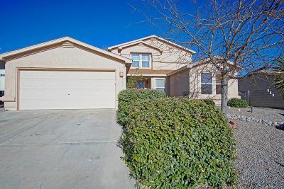 Rio Rancho Single Family Home For Sale: 6117 Chaco Canyon Drive NE