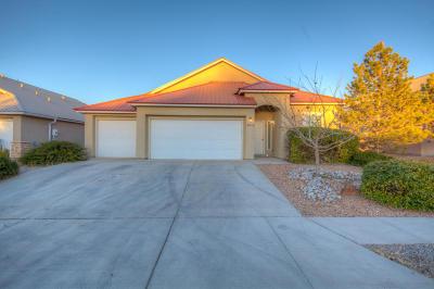 Rio Rancho Single Family Home For Sale: 2229 Deer Trail Loop NE