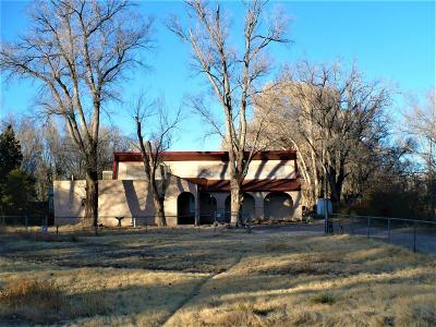 Albuquerque Single Family Home For Sale: 2323 Los Padillas Road SW