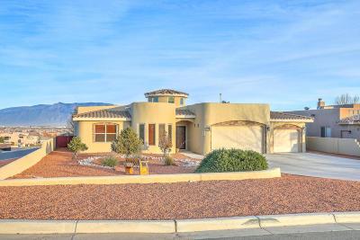 Rio Rancho Single Family Home For Sale: 2300 14th Street SE