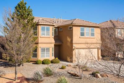 Albuquerque NM Single Family Home For Sale: $375,000