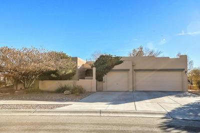 Albuquerque NM Single Family Home For Sale: $279,500
