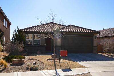 Rio Rancho Single Family Home For Sale: 417 Loma Linda Loop NE