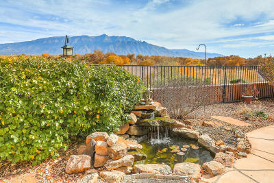 Bernalillo Single Family Home For Sale: 1120 Desert Willow Court