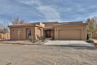 Single Family Home For Sale: 281 Entrada De Los Martinez