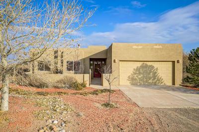 Rio Rancho Single Family Home For Sale: 2522 47th Street NE