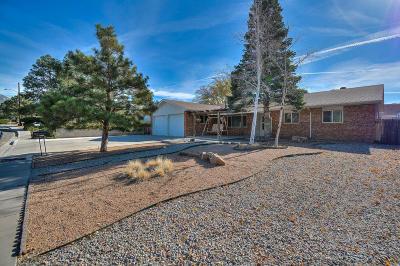 Albuquerque Single Family Home For Sale: 12200 Sierra Grande Avenue NE