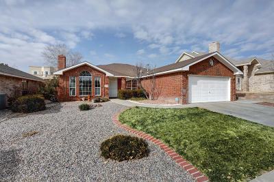 Albuquerque Single Family Home For Sale: 9305 Joe Montoya Place NW