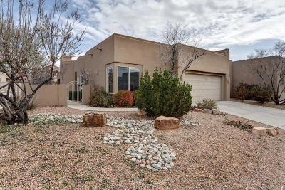 Albuquerque Single Family Home For Sale: 8936 Desert Fox Way NE