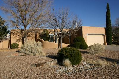 Rio Rancho Single Family Home For Sale: 6755 Silver Creek Drive NE