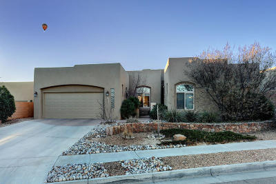 Albuquerque NM Single Family Home For Sale: $515,000