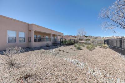 Rio Rancho Single Family Home For Sale: 2320 Flagstone Road NE