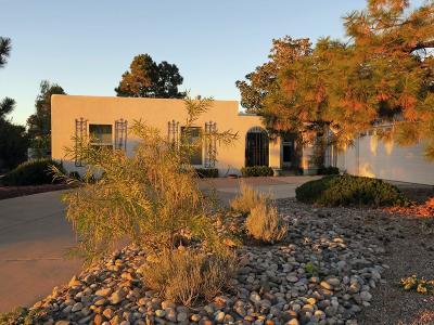Bernalillo County Single Family Home For Sale: 1515 La Cabra Drive SE