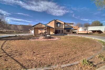 Albuquerque Single Family Home For Sale: 1511 Lucyle Place NW