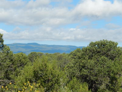 Tijeras NM Residential Lots & Land For Sale: $90,000