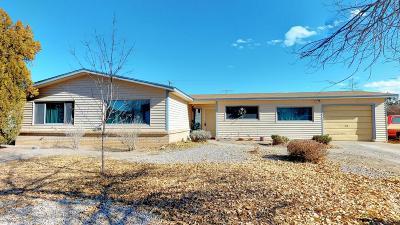 Albuquerque Single Family Home For Sale: 10116 Avenida Serena Drive NW