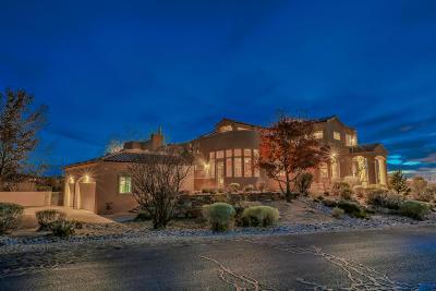 Albuquerque Single Family Home For Sale: 9700 Desert Mountain Road NE