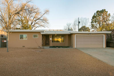 Albuquerque Single Family Home For Sale: 3614 Calle Del Monte NE
