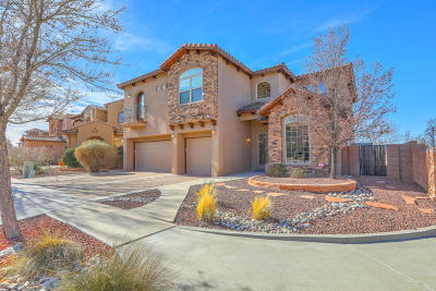 Albuquerque Single Family Home For Sale: 8639 Desert Dusk Court NE