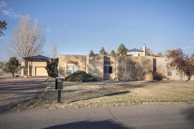 Albuquerque Single Family Home For Sale: 2037 Calle De Alondra NW