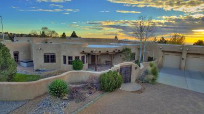 Albuquerque Single Family Home For Sale: 11010 Santa Monica Drive NE