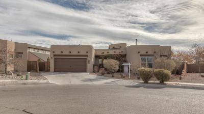 Rio Rancho Single Family Home For Sale: 2840 Abeto Lane SE